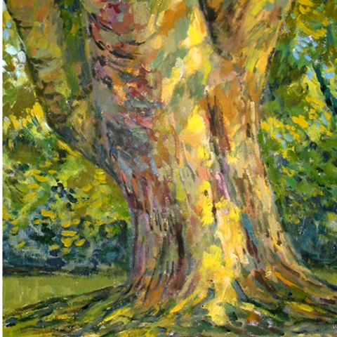 Alan Burgess tree trunk detail